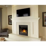 Napoleon Ascent x36 DV Gas Fireplace