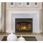 Napoleon Ascent X 42 DV Gas Fireplace