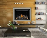 HD46 Napoleon Direct Vent Gas Fireplace