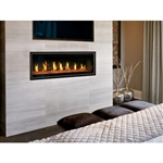 Napoleon Vector Series LV50  Direct Vent Gas Fireplace
