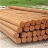 Landscape Timber 8 Treated Cedartone