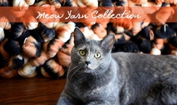 Meow Collection Sock Yarn from Ancient Arts