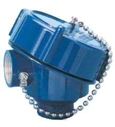 Explosion Proof Head