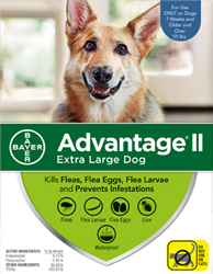 Advantage II For Extra Large Dogs Over 55 lbs, 4 Pack
