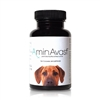 AminAvast Kidney Support For Dogs, 60 Capsules