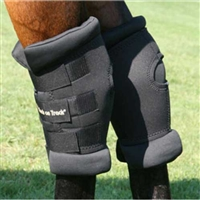 Back On Track Therapeutic Padded Royal Hock Boots For Sale!