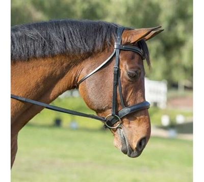 Recessed Crown Leather Dressage Bridle