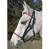 Beta Biothane Deluxe Add On Headstall & Halter Combo for Sale!