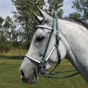 Halter with Removable Brow Band & Add-On Headstall for Sale!