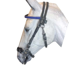 Flower Hackamore Bridle Combo For Sale!