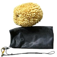 Natural Sea Sponge in a Bag for Sale!