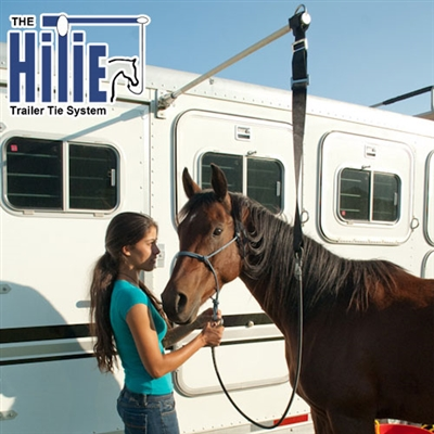 Free Shipping On The Hi Tie Trailer Tie System