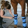 Equi Cool Down Equine Leg Wraps for Sale!