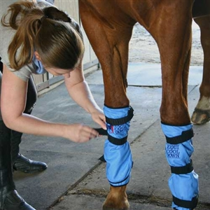 Best Discount Price On Equi Cool Down Equine Leg Wraps