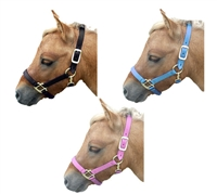 Nylon Double Buckle Mini Halter for sale!