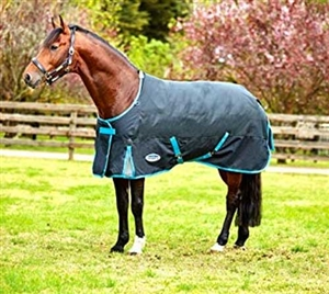 Weatherbeeta Comfitec Premier Free Standard Neck Medium- Black/Turquoise For Sale!