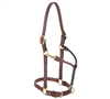 "3/4"" Double Buckle Halter for sale!"