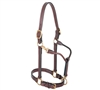 "1"" Leather Track Horse Halter for sale!"