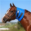 Superior Throat Latch Sweat Help show off your horses perfect throat latch with the superior throat latch sweat from Dura-Tech. Designed from a super stretchy, lightweight neoprene to conform to the throat latch area and is safe for overnight use.