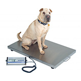DETECTO Veterinary Scale, Digital, 330 lb / 150 kg, with Wheels. MFID: VET-330WH