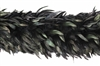 Schlappens Boa Black Irridescents  2 yard length approximately 8-10 inches in diameter quality rooster feathers