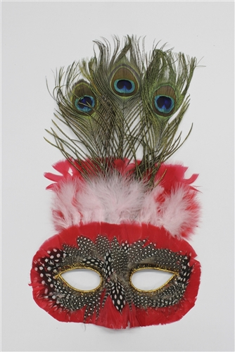 Feather Mask