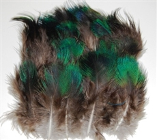 Peacock Plumage - Natural Black