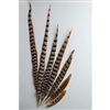 "Reeves Pheasant Tails 04""-10"""