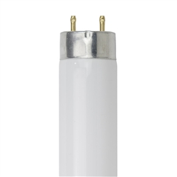F14T8/CW 14 Watt T8 Cool White Fluorescent G13 Base, F14T8CW, F14T8-CW, 14 Watt T8 Cool White Fluorescent G13 Base