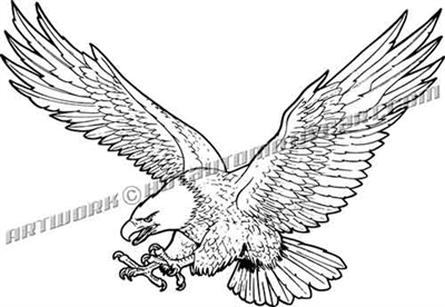 bald eagle vector clip art