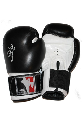 Boxing Gloves 12oz