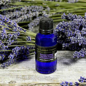 Organic Lavender Essential Oil - 1 fl oz