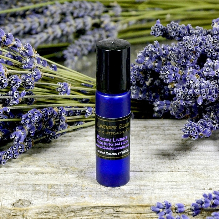 Organic Lavender Essential Oil - 'Grosso' Roll-on