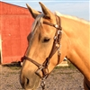 BioThane Halter Bridle Add-a-Bridle in Chocolate Brown or Black Beta. EZ Change or Changeable Browband. Horse Shoe Embossed Western Buckles with Concho Covered Snaps.   All hardware is Stainless Steel.