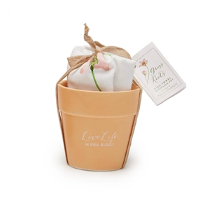 What a sweet gift set for a gardener!  Floral Towel in Clay Pot | for the cook who loves to garden | LaBelle's General Store