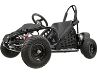 Go Kart Electric