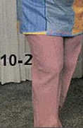 (10-2) Polyester Pants