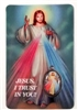 Divine Mercy Laminated with Medal Holy Card