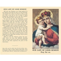 Our Lady of Good Remedy Prayercard