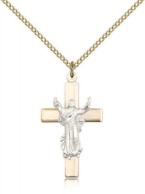 "Two-Tone SS/GF Cross Pendant, Gold Filled Lite Curb Chain, 1 1/8"" x 5/8"""