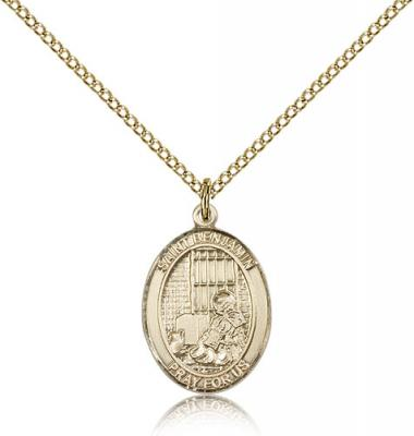 "Gold Filled St. Benjamin Pendant, Gold Filled Lite Curb Chain, Medium Size Catholic Medal, 3/4"" x 1/2"""