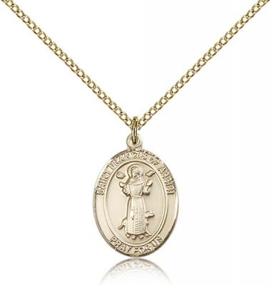 "Gold Filled St. Francis of Assisi Pendant, Gold Filled Lite Curb Chain, Medium Size Catholic Medal, 3/4"" x 1/2"""