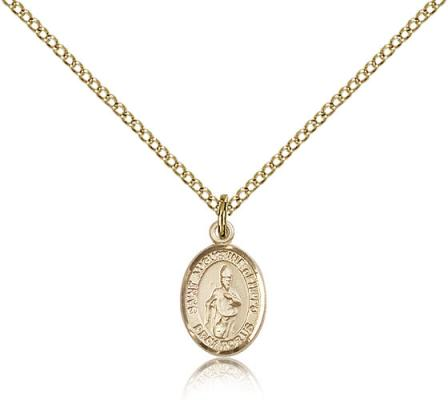 "Gold Filled St. Augustine of Hippo Pendant, Gold Filled Lite Curb Chain, Small Size Catholic Medal, 1/2"" x 1/4"""