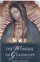 The Wonder of Guadalupe by Francis Johnston