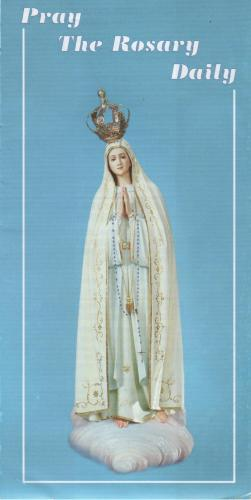 photo regarding How to Pray the Rosary Printable Booklet referred to as Pray the Rosary Everyday Pamphlet PR2