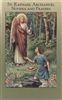 St. Raphael Archangel Novena and Prayers 2432-526