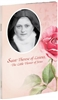 Saint Therese of Lisieux, The Little Flower of Jesus 67/04