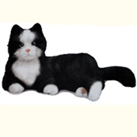 Playmate Black and White Tuxedo Cat