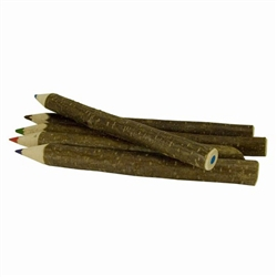 Natural Twig Crayon