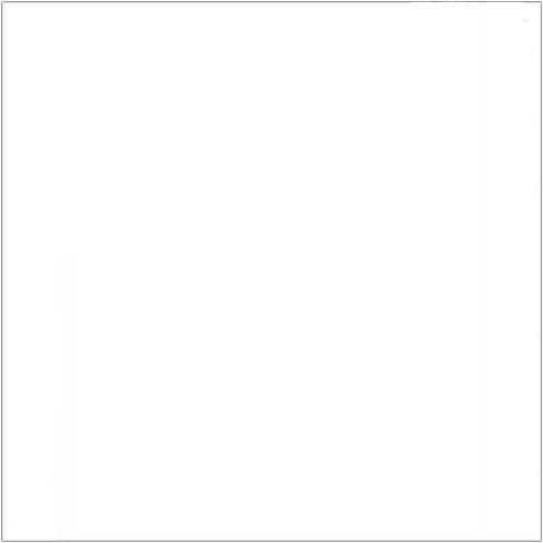 Polish Art Center - Polish Scrapbook Paper - White